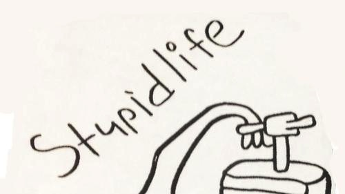 Stupid+Life+cover